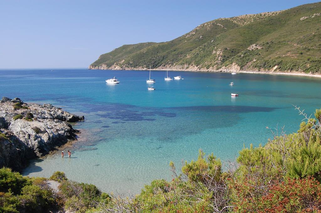 Noleggio gommoni e barche isola d'Elba