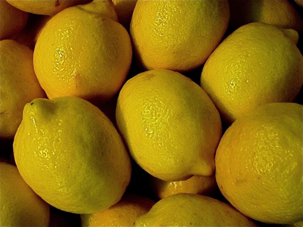Limoni coste amalfitane