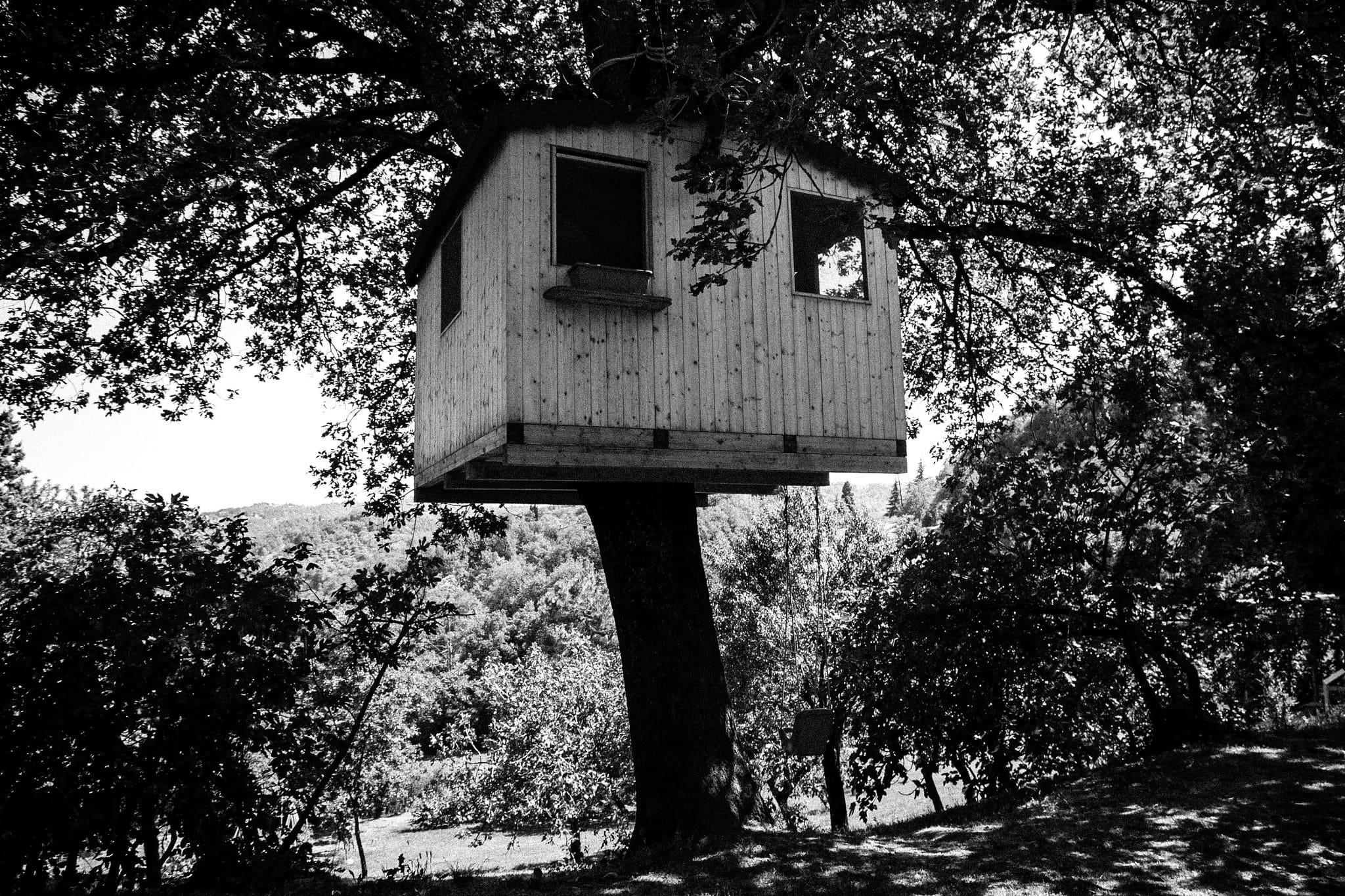 case sull'albero Piemonte
