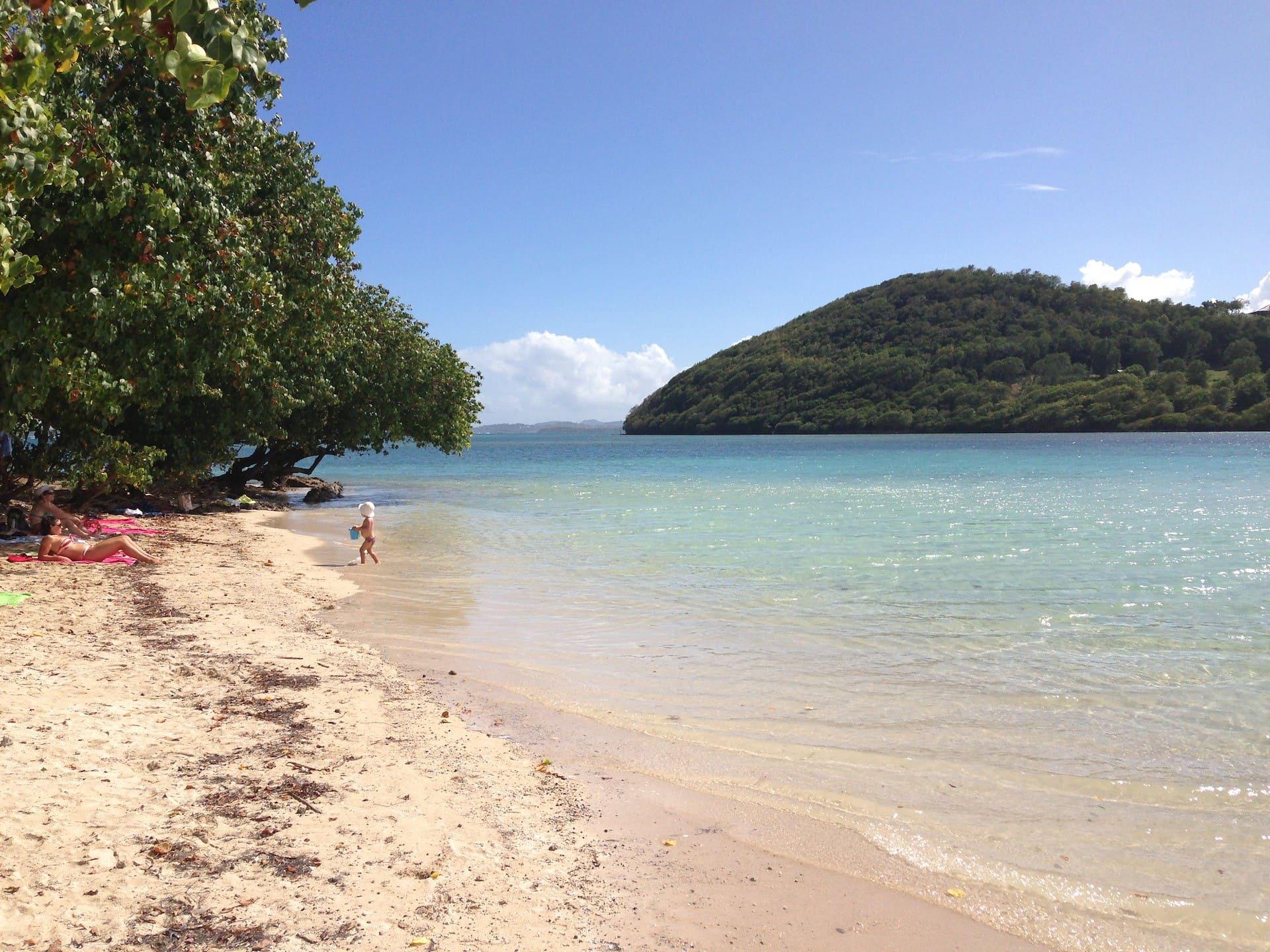 mari caraibici